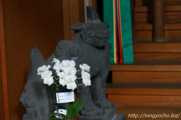 松島神社狛犬左画像