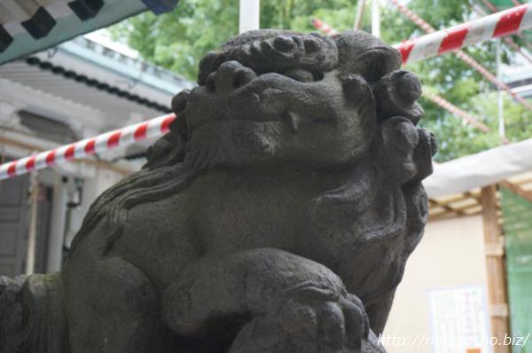 椙森神社狛犬右画像